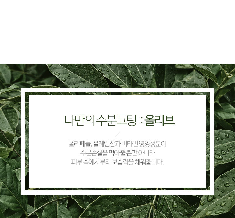 제이숲_올리브_클렌징폼